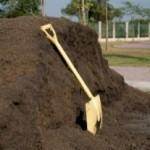 Manure pile + shovel