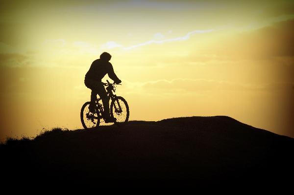 lab-man-on=bike-w-sunset