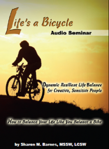 LifesABicycle Audio Seminar cover